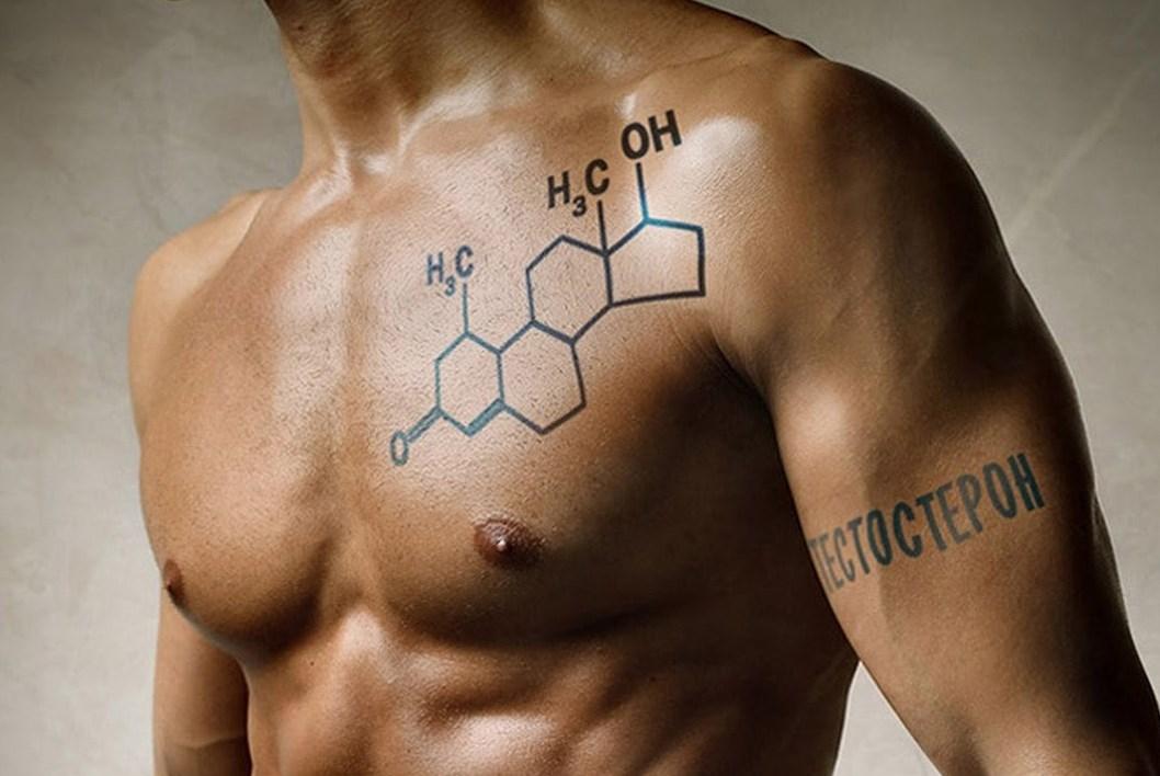Гормон мужской силы. Роль тестостерона в мужском и женском организме